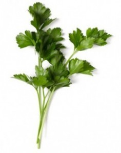 parsley-e1295166889705
